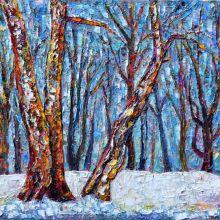 Зимна гора