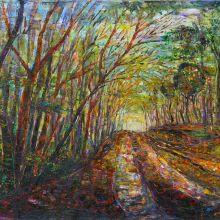 Път в гората